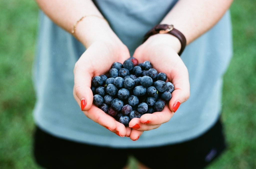 photo of hands holding blueberries